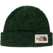 salty dog beanie, night green/british khaki, onesize,  the north face