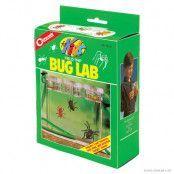 Field Trip Bug Lab For Kids